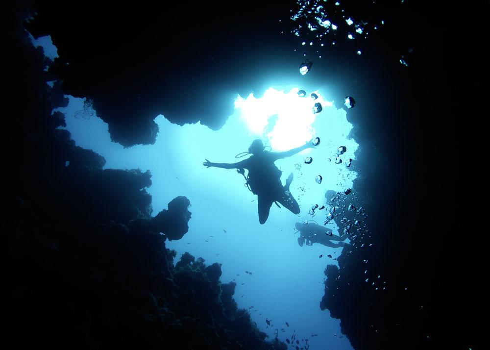 Deep - Diving Specialty
