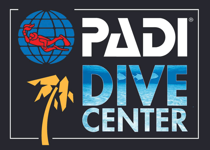 PADI Dive center in Dahab
