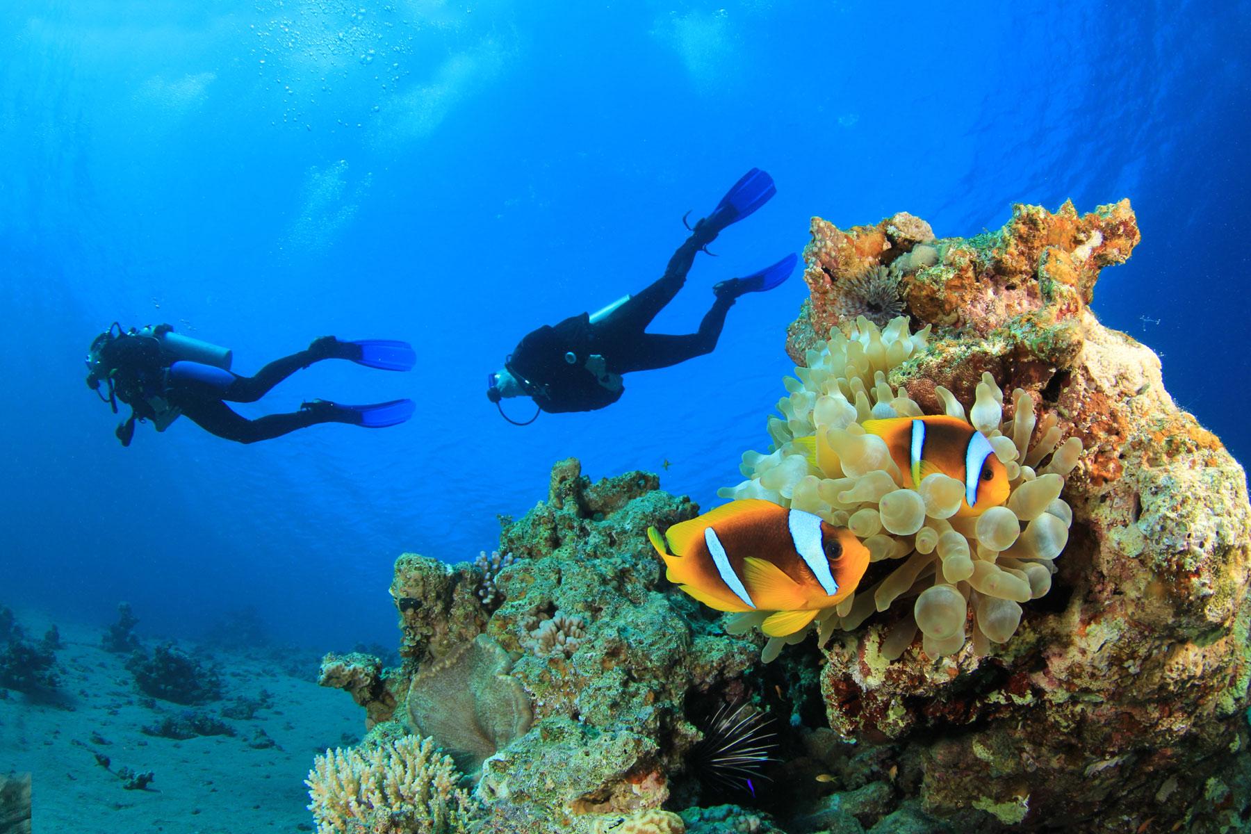 Recreational scuba diving in Dahab