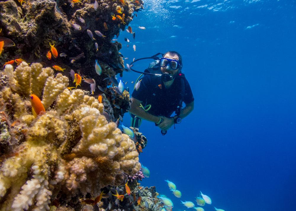 Learn to scuba dive in Dahab